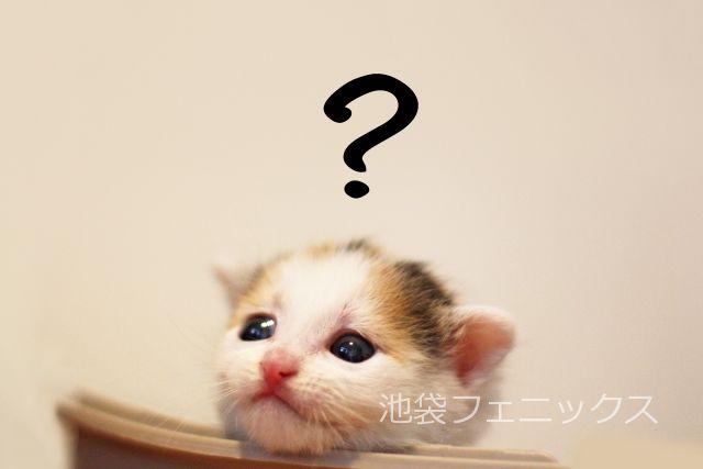 キャバクラの面接の質問事項を知る